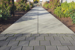 Commercial Landscape Management In McLean VA