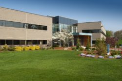 Commercial Landscape Contractor In McLean VA