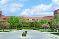 Commercial Landscaping Service McLean