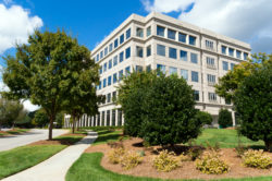 commercial landscape maintenance in Great Falls VA